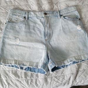 LOFT Denim highwaisted shorts